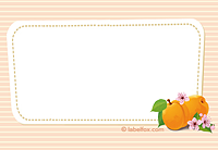 Etikett Aprikose groß