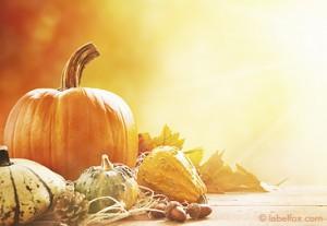 Herbstmotiv mit Kürbis